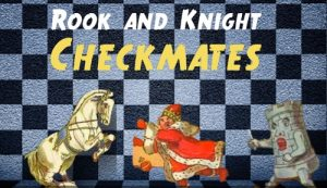 Rook and Knight Checkmating Patterns explored by Mr. C