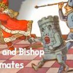 Rook and Bishop Mates